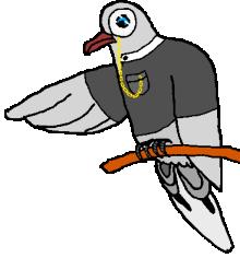 Irregular Pigeon
