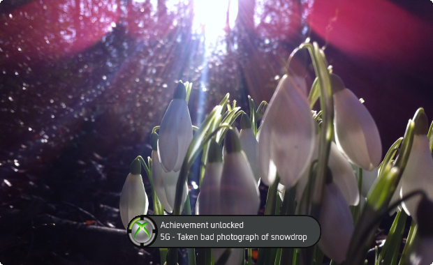 Blast, it seemed so real until then... Snowdrops!