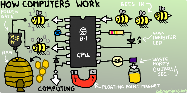 Computers Work With Bees