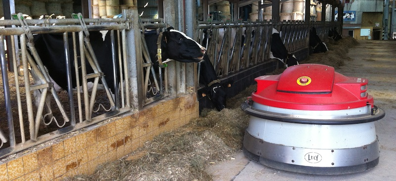 Farm cow feeding robot